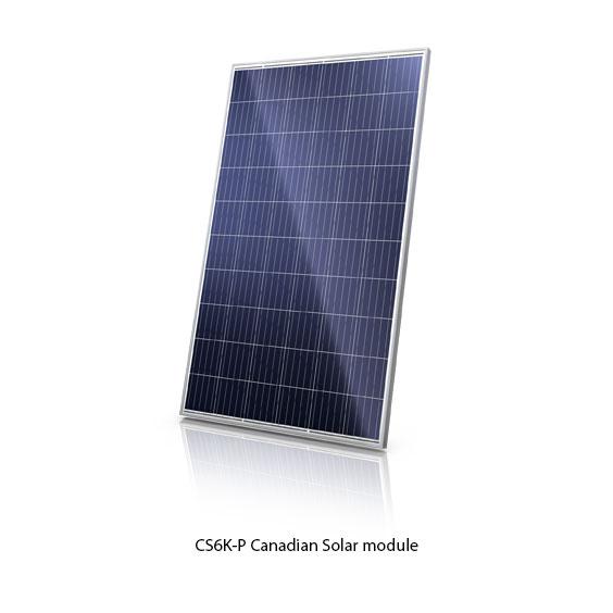 Canadian_Solar_CS6K-P_module